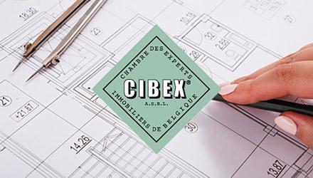 CIBEX projet web réalisé par Fidelo